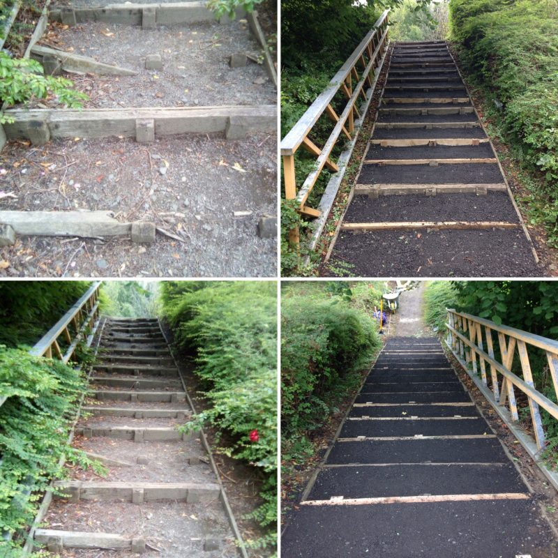 Path and step maintenance (always a winner with volunteers)