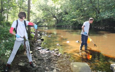 New ways to share ideas: Mixing art with environmental science