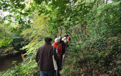 Explorer walk two – Howden Rock Ramp
