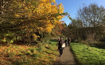 Final explorer walk – River Almond