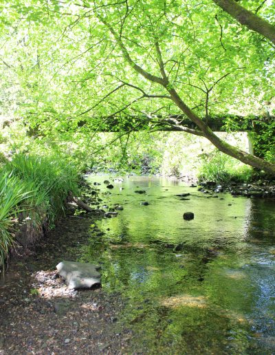 """Beth Gray -- """"You can see the river running under the pipes with everything growing around them"""", Murieston Valley"""