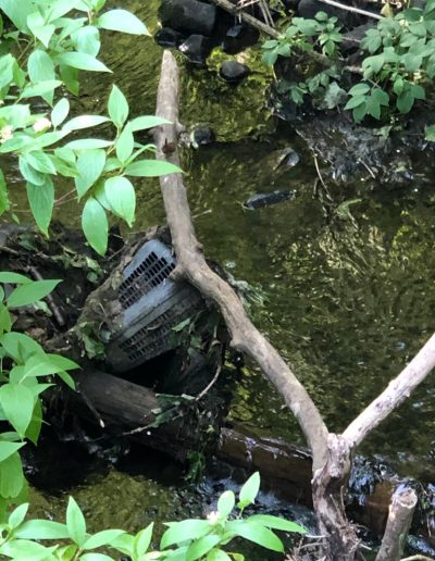 """Eshal Hameed -- """"The river was still flowing fast and looked clean even with part of a lawnmower in it!"""", Livingston Village"""